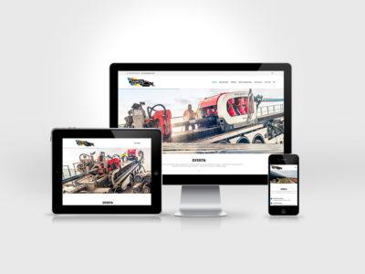 Strona www Janicki